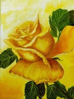 Yellow rose the  second