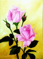 Light Pink Rose the first